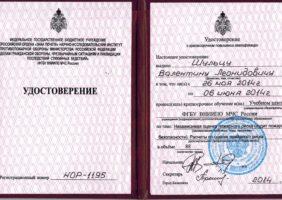 Удостоверение Шульц В. Л. Аудитор по определению пожарных рисков